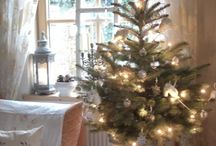 Christmas is my favorite! / by Rachel Hains