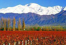 Mendoza / endoza es una provincia de Argentina situada en la Región de Cuyo. Limita al norte con la provincia de San Juan, al este con la provincia de San Luis, al sur con la La Pampa y Neuquén, y al oeste con Chile; este último límite sigue la cordillera de los Andes. Su capital es la ciudad de Mendoza.  Con una superficie de 148 827 km², es la séptima provincia más extensa del país, por lo que ocupa el 5,35% de la superficie total del mismo.   / by Pablo Zárate