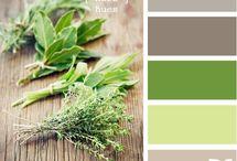 Color Combo ideas / by Michelle Tuma-Spano