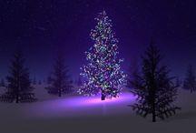 Holidays / by Lisa Callaway