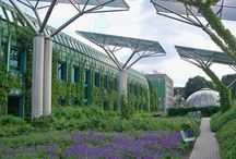 Architecture - Green, Sustainable / by david hannaford mitchell