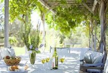 Outdoor space  / by Lolly Sneed