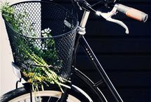 Bicycles  / by Shanice Alarcon