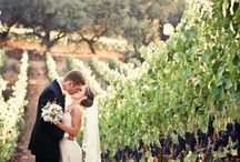 Winery / Vinyard Themed Weddings and Venues / Weddings ceremonies and receptions at vineyard or a winery venue and winery themed wedding decor. / by Love & Lavender