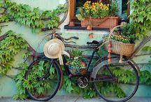 Bikes <3 / by Taller De Millyta