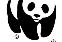 Intergovernmental & International Organizations Logos / by Yücel Söylemez