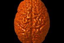 Brain Breaks / by Kristen Hernandez