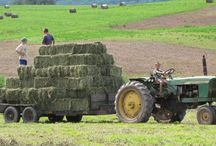 Country Farming / by Christa Gettys