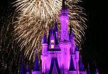 Disney World Trip / by Katie Carver