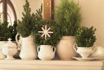 Christmas / by Sharon Poarch | GraceHouseDesigns.com
