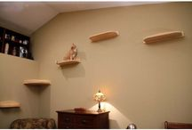 Cat furniture and shelves / by Patricia Long-Moss
