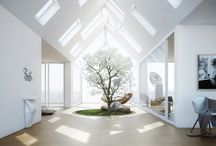 Light and Windows / by Bethany Proctor
