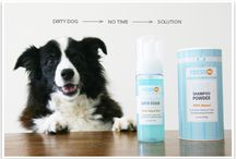 Products I Love / by Fresh Dog
