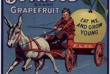 Vintage Ads / by Karla Keffer