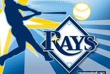 Tampa Bay Rays / The best organization in major league baseball ! / by Baseball News Source