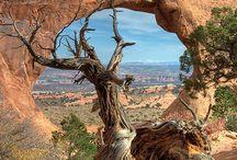 Places to visit / by Lora Nahm