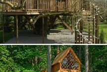 Treehouse Dreams / by Donna Burns