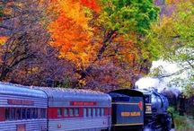 Trains / by Daphne Smith