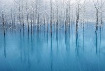 500px Winter / by Hiroaki N