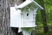 Birdhouses, / by roxane .