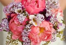 bouquet / by Jen Coronin