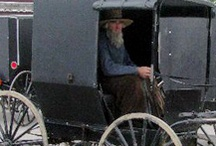 Admirable AMISH / I love the Amish people and admire their way of life.  It must be so difficult to stay as they are with all the world around them moving forward.  The thing I admire most about the Amish people is the fact that they do not believe in killing for any reason.  I agree with them 100% / by Christine B Morris