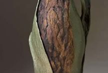 Inspirational Ceramics / by Jenny Gholson-Morris