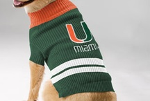 Hurricane Pets / by Miami Hurricanes