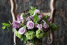 Floral Arrangements i Heart / by Kimberley Mangiantini
