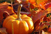 Fall into Autumn / by Kim Stout