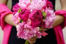Wedding Bouquets / by Debra Richter-Silnicki