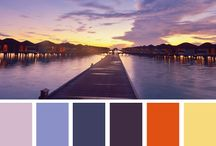 Color Selection Ideas / by ProTect Painters International