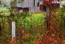 old barns / by Kathy Johnson Hutchcraft