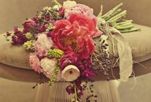 Wedding Ideas I Love! / by Kathy Landwermeyer