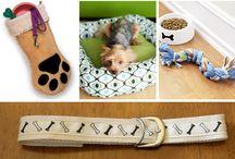 Doggie stuff / by Pilar de los Cobos