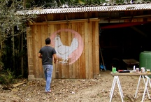 Chicken Residences & Tractors / by Love Nest