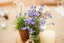 {flowers} / by Sumera Naveed
