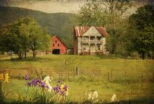 Love the country/Country life / by Ramona Ellerman Clark