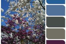 Craft: SCB-Color Schemes-Dark / by Jeanette Schwarz