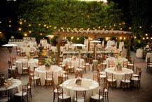 Wedding / by Becky Shepherd