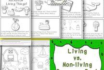 Living/non living / by Emily Miller