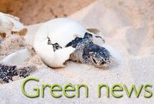 Green News / by Royal Resorts
