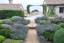 gardening  / by Henriette Marie