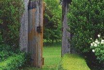 Garden / by Julia W.