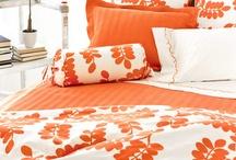 orange / by Tricia Hettwer