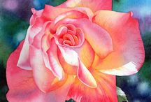 Watercolour painting / Paintings and tutorials in watercolour. / by Georgia Denby