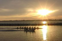 Rowing Photos / Because there are so many good ones / by Canisius Athletics