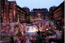 Disney Resorts I like / by Martha Tygrett