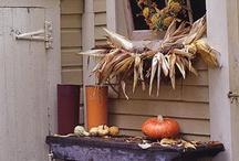 Autumn / by Conni Kinzler