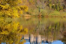 Biltmore House / by Pam Dillashaw